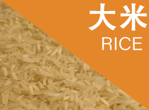 All About Jasmine Rice